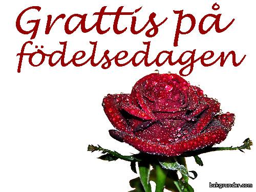 grattis på födelsedagen e kort Välkomna till Svenska NaturVykort E vykort grattis på födelsedagen e kort