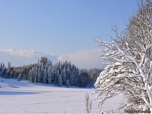 vinter015b
